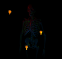 Spooky Skeleton with Lights!